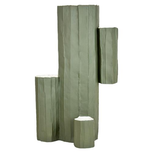 Cactus Vaso Colorato