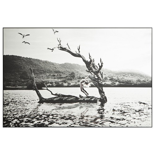 Alana St. Barth (Saline) Framed Print