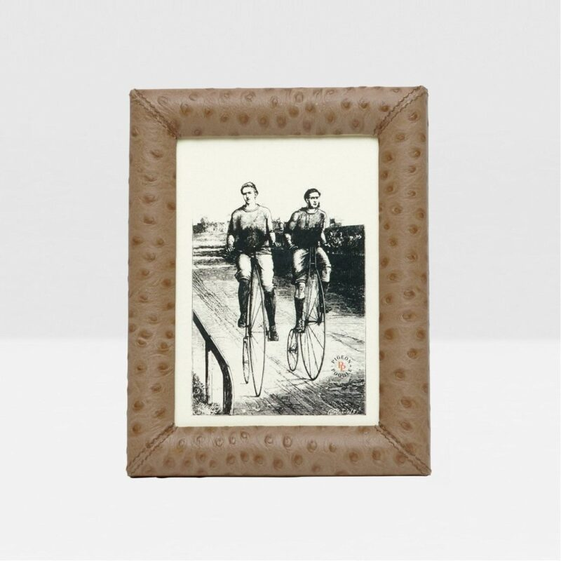 WITNEY oat brown stamped ostrich frame